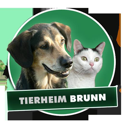 Herzlich Willkommen Tierheim Brunn